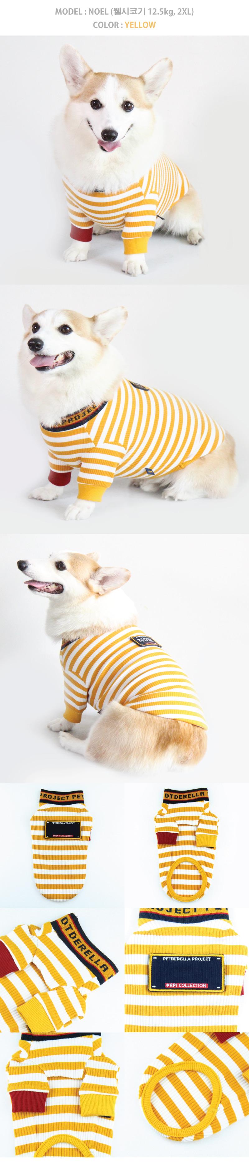 펫데렐라 프로젝트(PETDERELLA PROJECT) 로고밴딩 티셔츠 (옐로우)